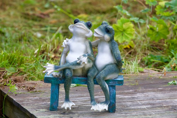 frogs-2695218_1920