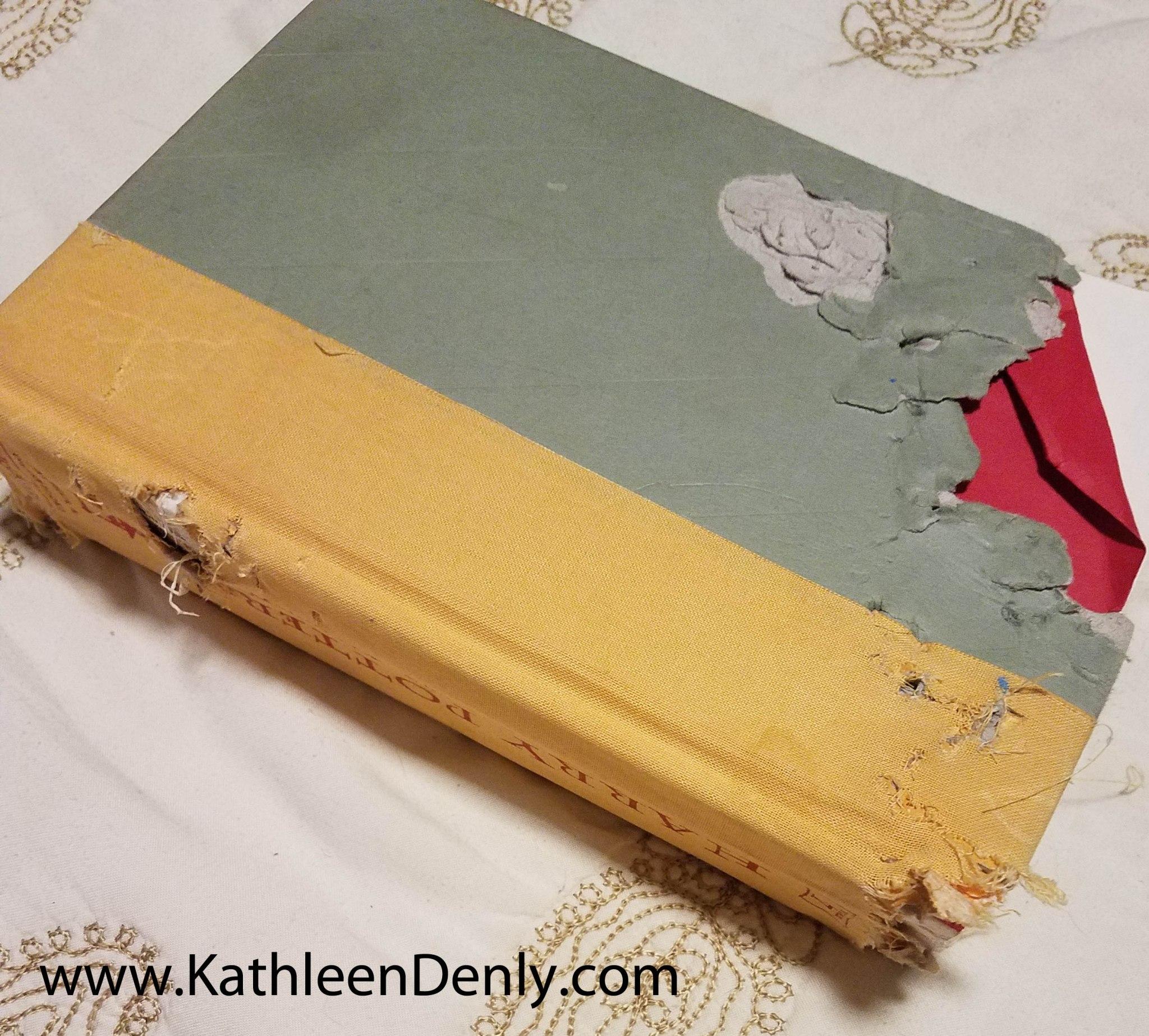 Animal Chewed Book