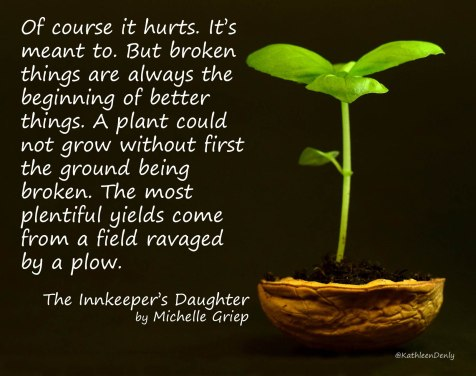 Book Quote Image - The Innkeeper's Daughter - Broken Things