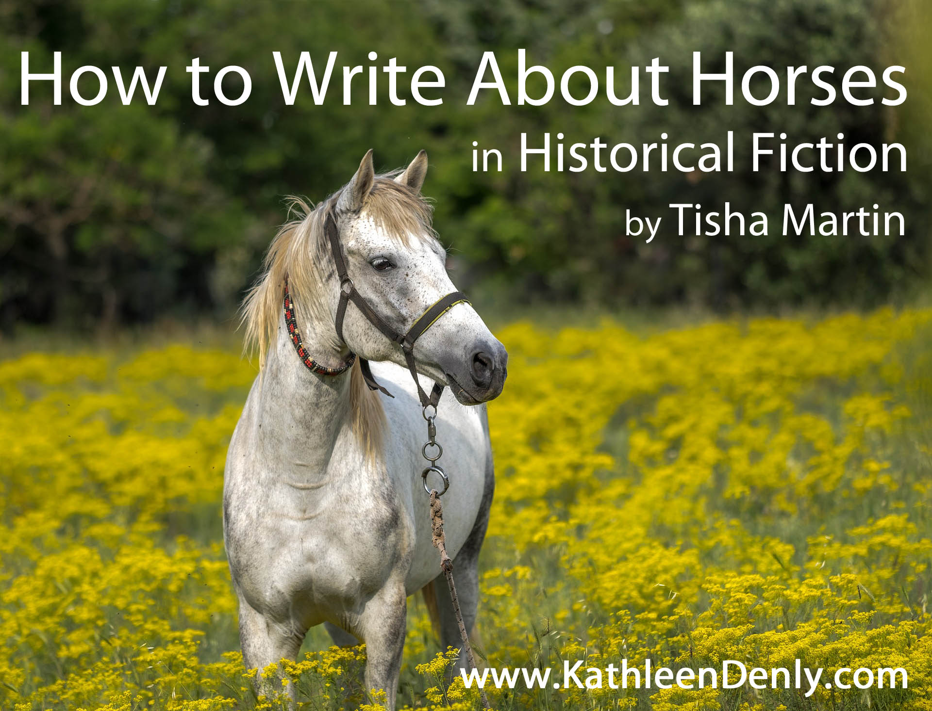 How to Write about Horses in Historical Fiction