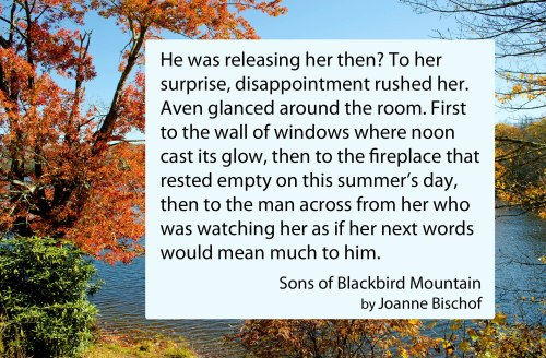 Book Quote - Sons of Blackbird Mountain - Surprising Disappointment