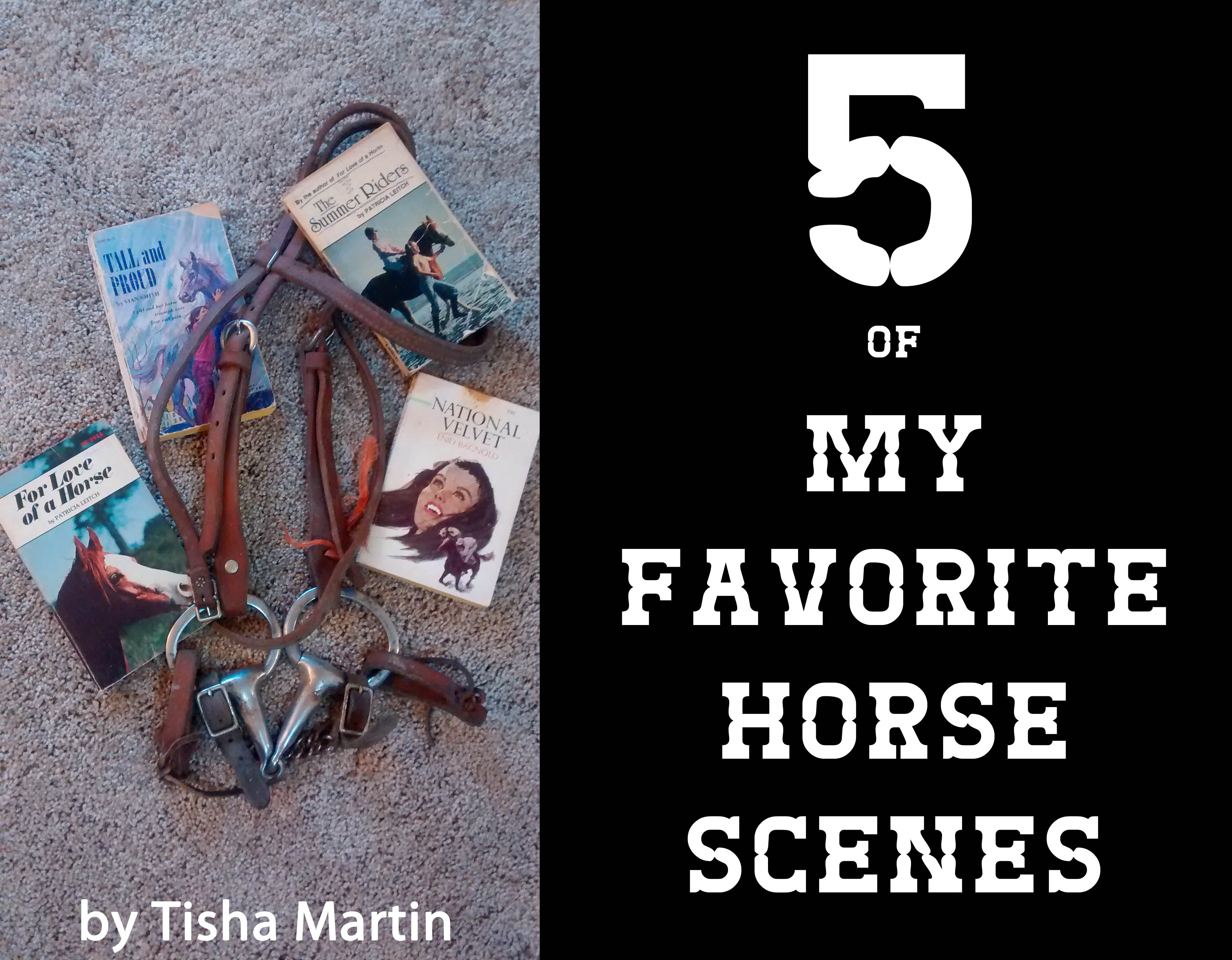 Guest Post - Tisha Martin - 5 of My Favorite Horse Scenes